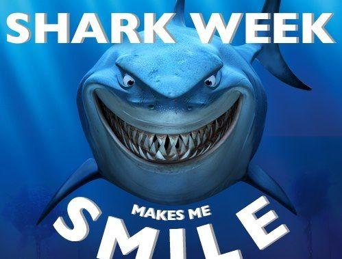How Many Sharks Do Humans Kill Per Hour